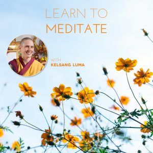 Online - Learn to Meditate